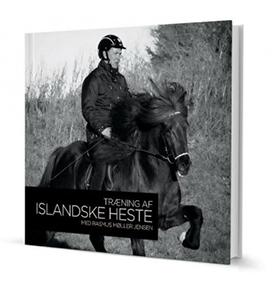 Træning af islandske heste