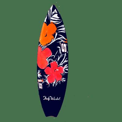 Tavola Surf Simon Anderson