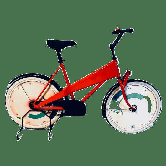 bici-olandese-rara