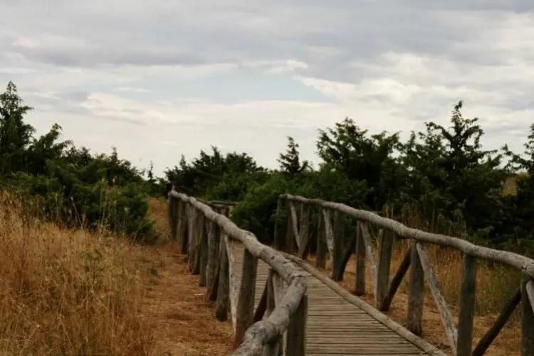 Viareggio fietsen naar het strand
