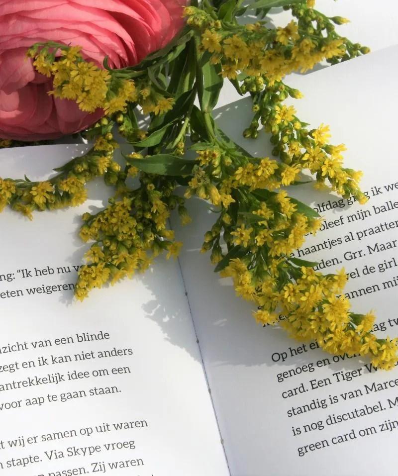 Het boek 'Expat mama in Finland' van Gaby Buining - de Vrieze