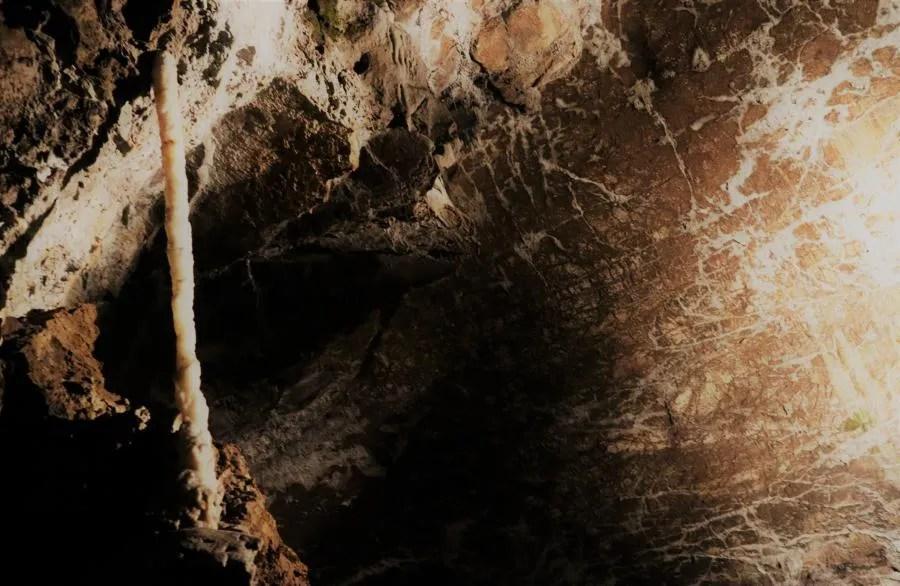 Bezoek de grotten van Postojna in Slovenië