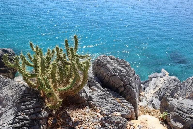 Het privé eiland Aponisos in Agristri, Griekenland