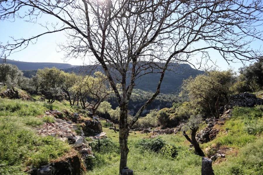 Het gebergte Serra dos Candeeiros