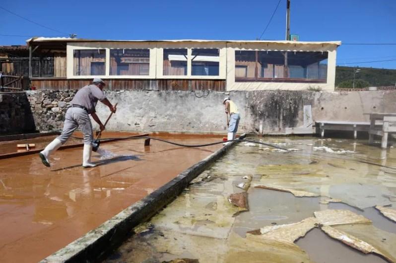 Het proces van zoutwinnen in Portugal