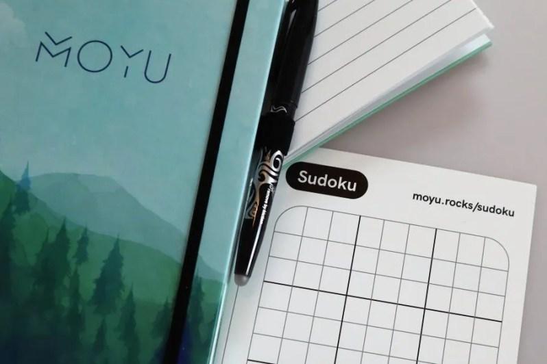 Review van steenpapieren notitieboek
