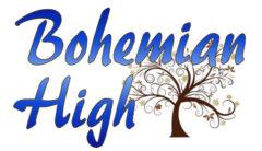 cropped-Logo_Blue_Brown1-1.jpg