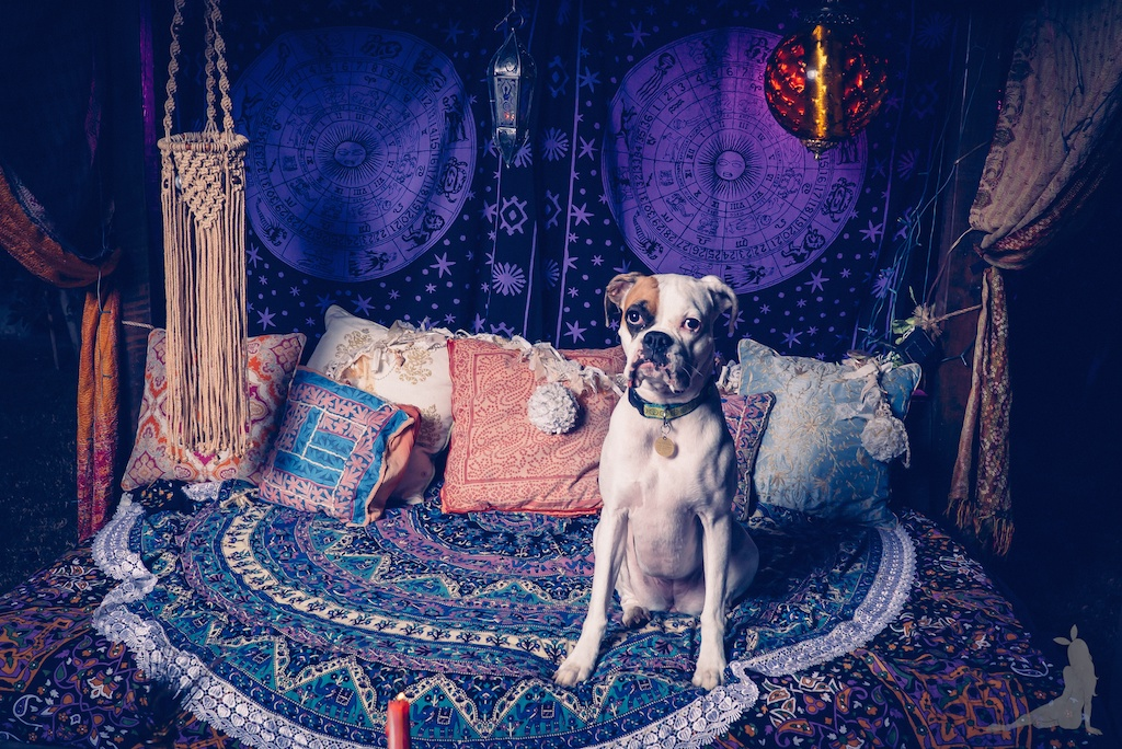 tracey-filapose-boho-bunnie-gypsy-jewels-bohemian-tapestry-decor-velvet-fringe-kimono-vintage-trippy-hippie-store-drip-candles-fortune-teller 1