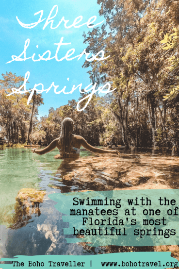Three Sisters Springs in Crystal River Florida is a manatee haven! Learn all about how to visit the manatees and the best time of year to swim with them. All you know to know about florida springs that are some of the clearest in the state! #florida #loveFL #sunshinestate #outdoors #kayak