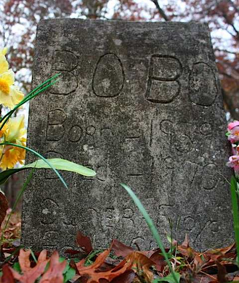 Tour Of America S Only Coon Dog Cemetery Boing Boing