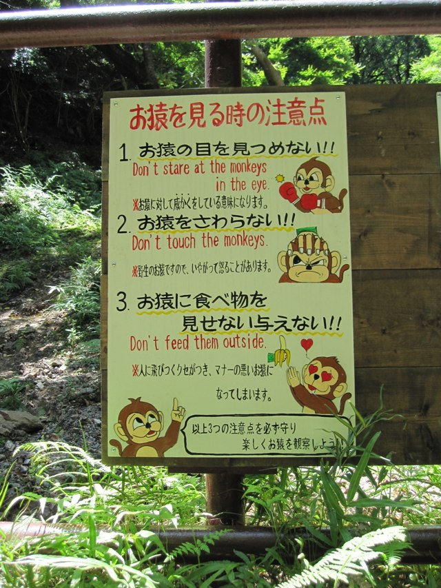 Arashiyama-Monkeys-05-1