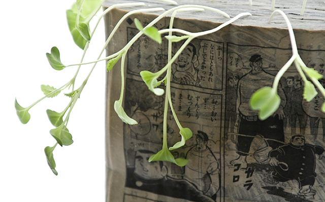 Manga Farming, by Koshi Kawachi -- .jpg