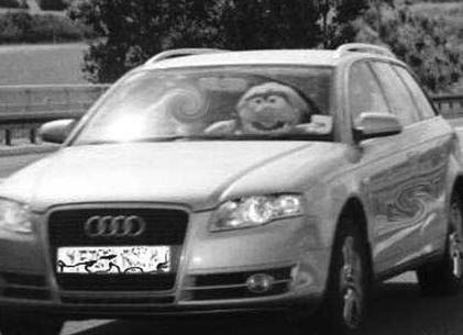 Muppet-At-The-Wheel