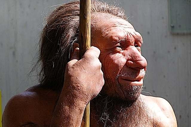 neanderthalthinksabtyourmom.jpg