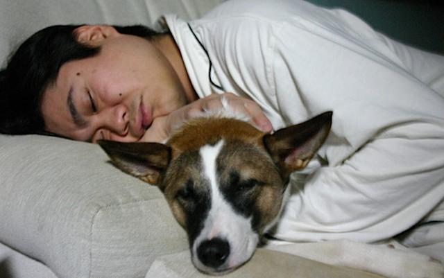 sleepysleep.jpg