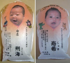 Archive Dakigo Sakumi