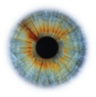 Artists Rankin Portfolio Specialprojects Images Eye-Scapes---02