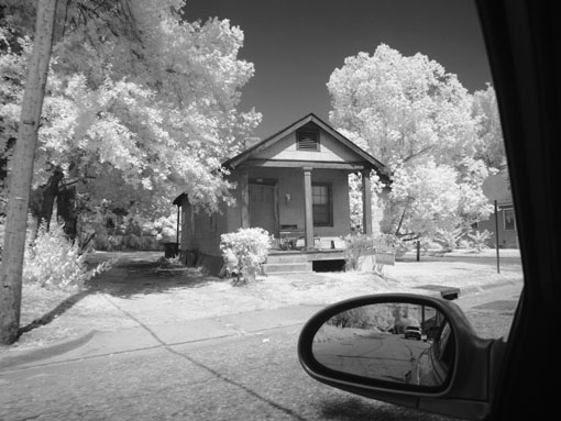 Infra-red photo - 2
