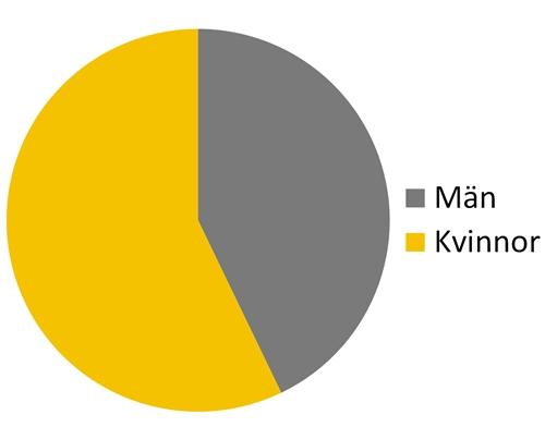 Könsfördelning hos författare till böcker lästa första halvan av 2017.