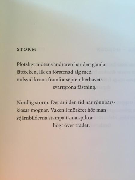 Ur 17 dikter av Tomas Tranströmer