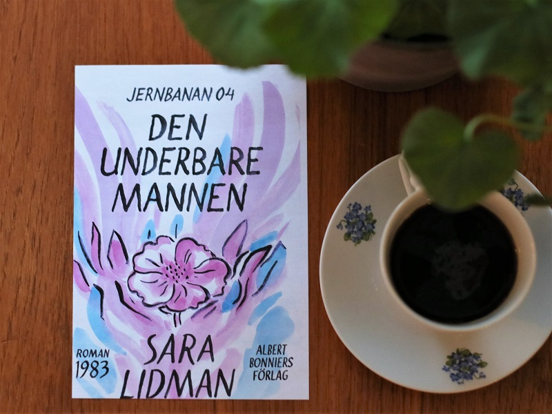 Den underbare mannen av Sara Lidman