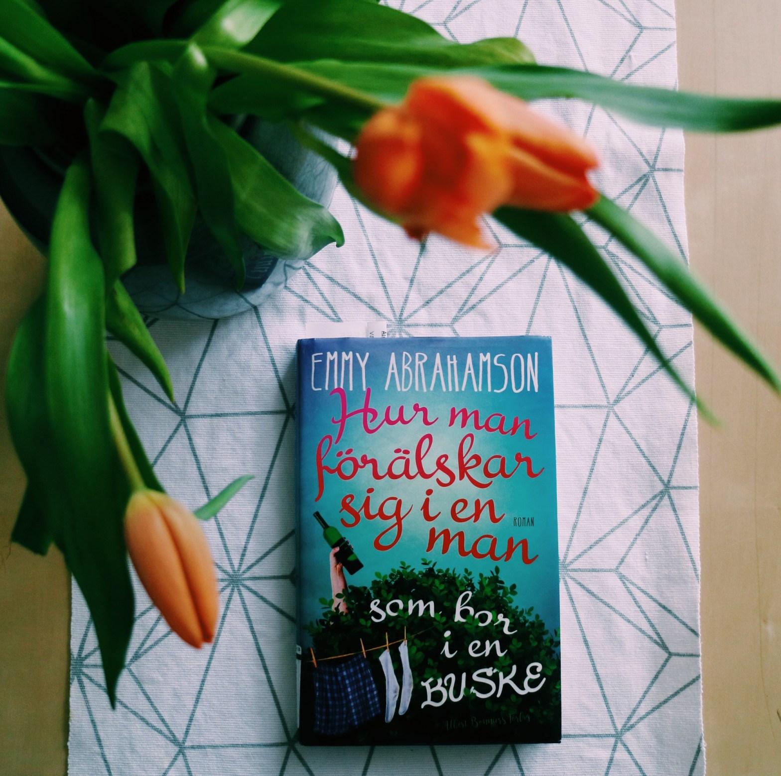 Hur man förälskar sig i en man som bor i en buske av Emmy Abrahamson