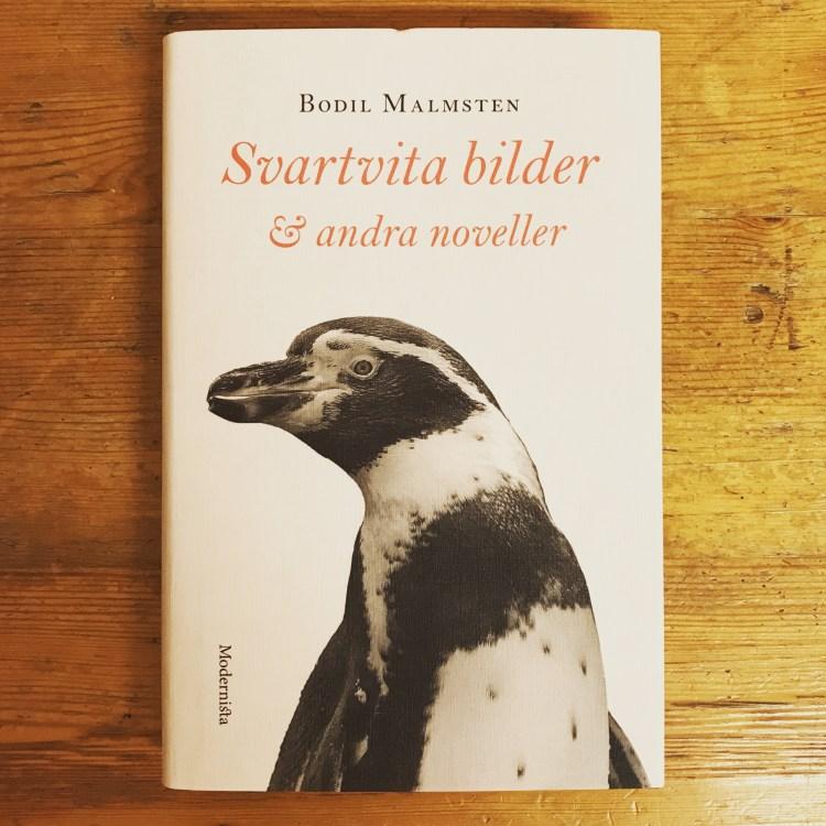 Svartvita bilder & andra noveller av Bodil Malmsten