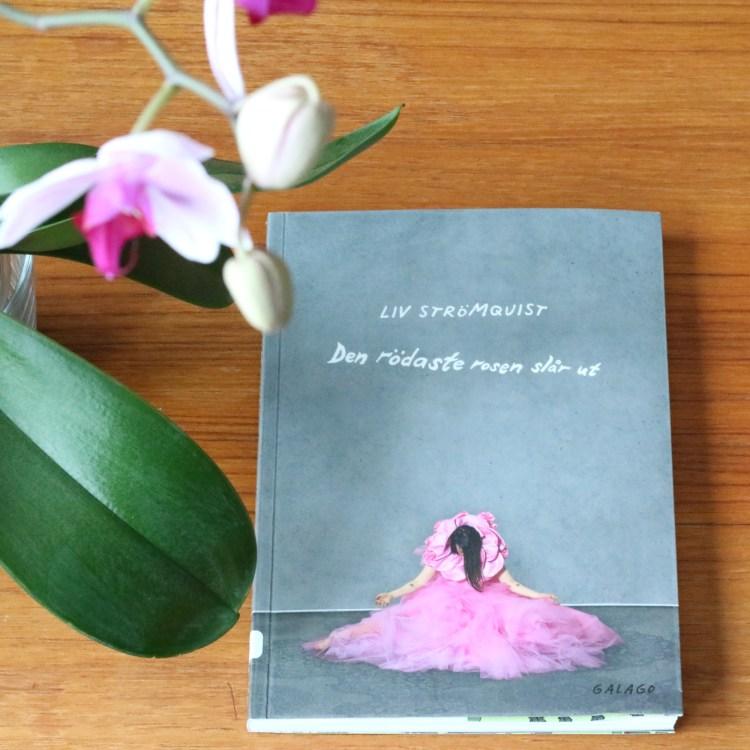 Den rödaste rosen slår ut av Liv Strömquist