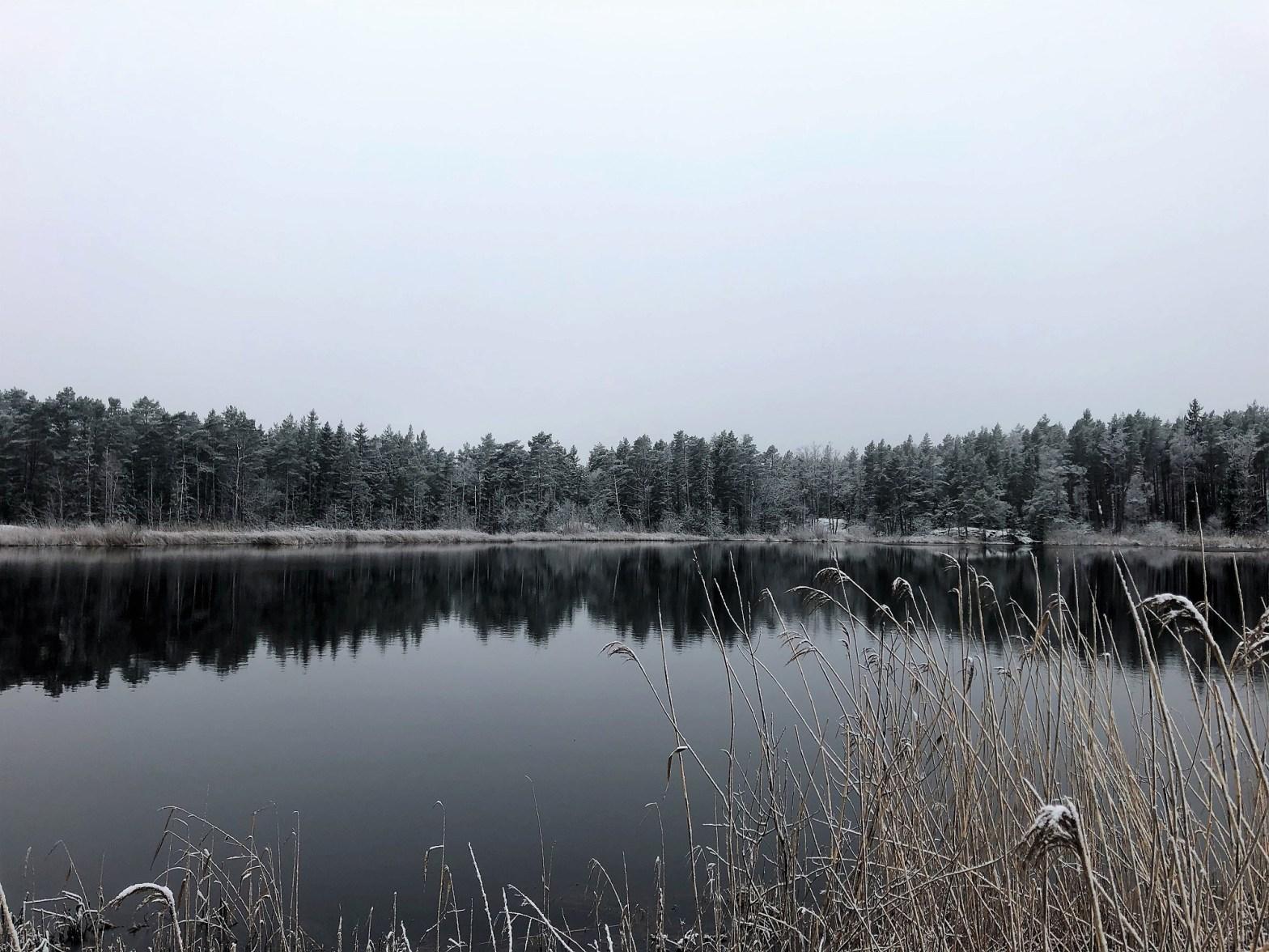 Frost vid jul