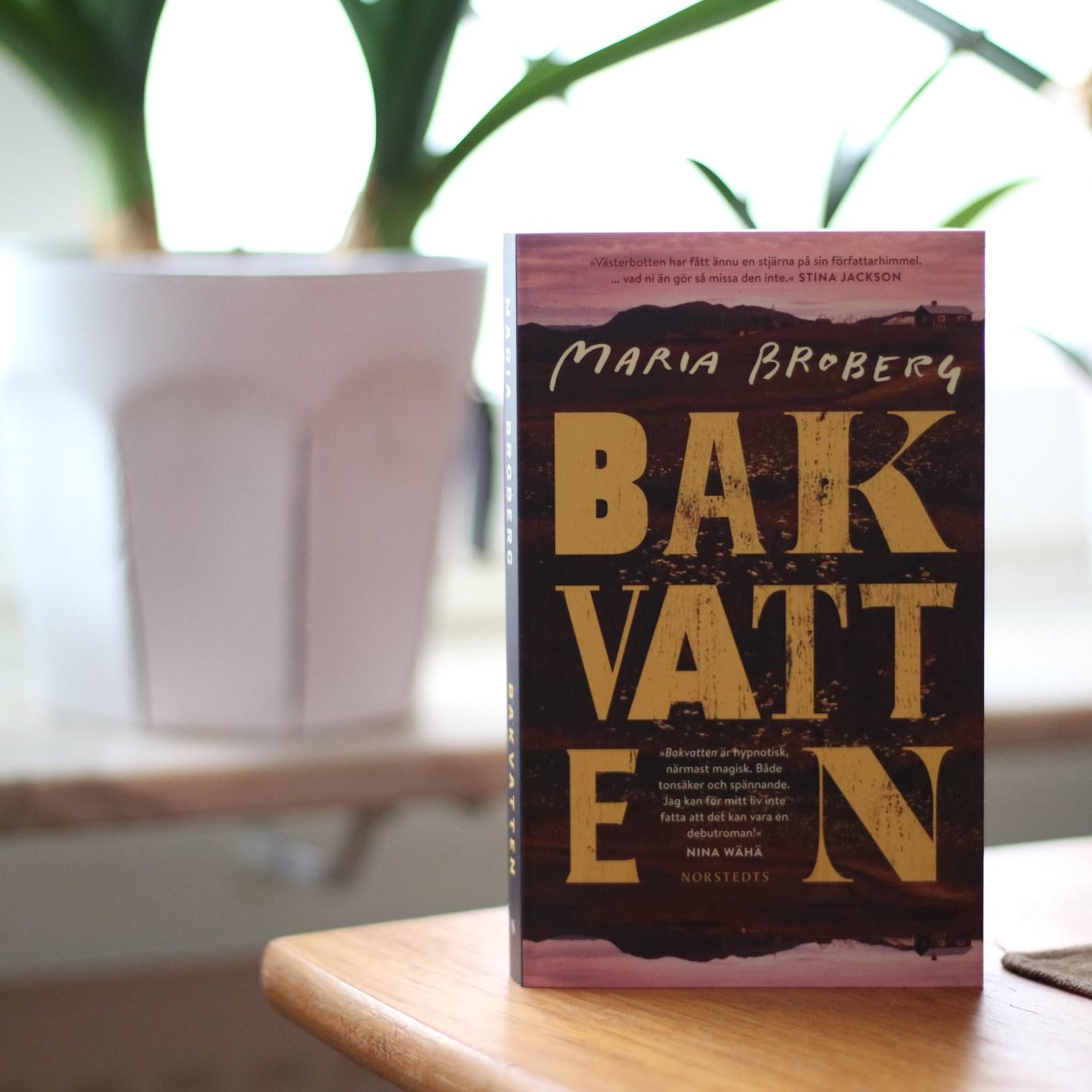 Bakvatten av Maria Broberg