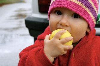 Stets wachsam: Die kleine Apfelfee Lilith.