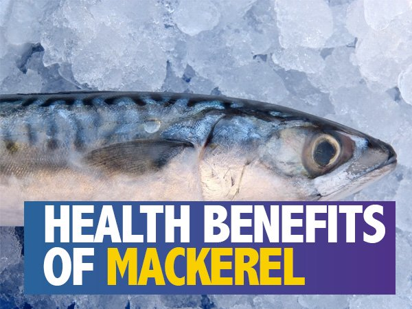 health benefits of mackerel