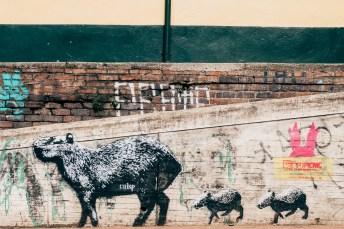 Bogota Colombia Grafitti Photography(4) May 15