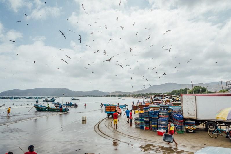 Puerto Lopez - Fish Market (12 of 40) May 15