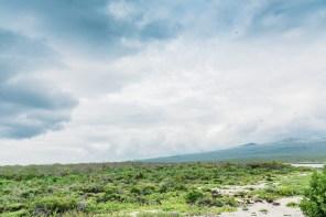 Galapagos - Leon Dormino (Kicker Rock) (57 of 61) June 15