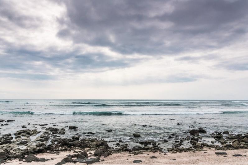 Galapagos - Leon Dormino (Kicker Rock) (61 of 61) June 15