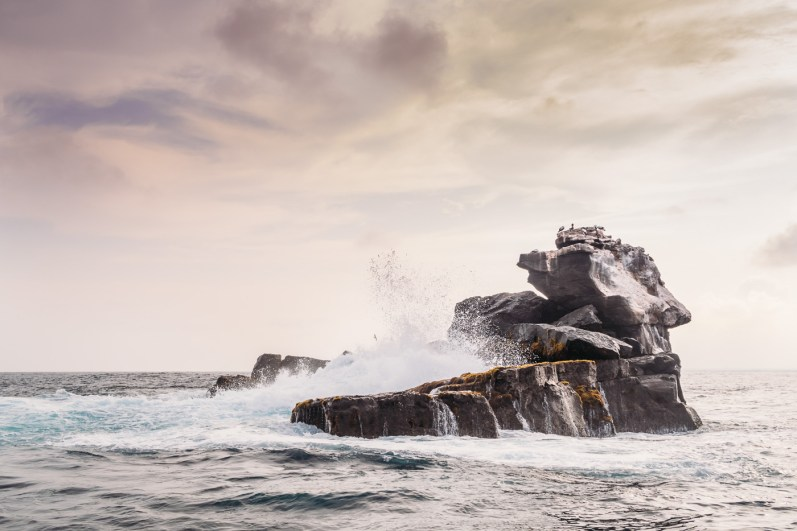 Galapagos - Los Tuneles (56 of 71) June 15