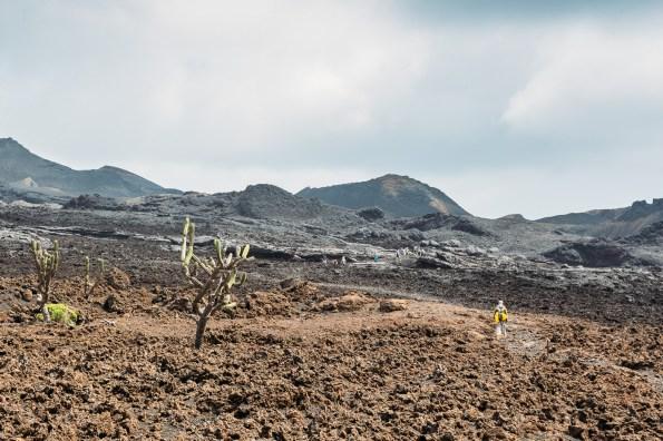 Galapagos - Sierra Negra Volcano (41 of 72) June 15