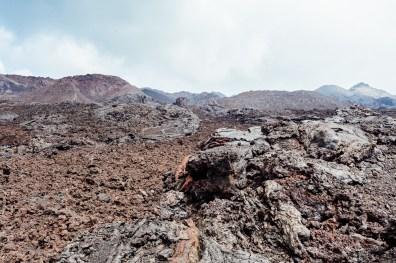 Galapagos - Sierra Negra Volcano (45 of 72) June 15