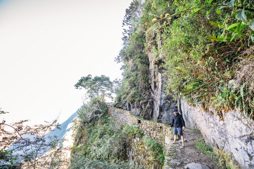 Machu Picchu Photos -23- June 2015
