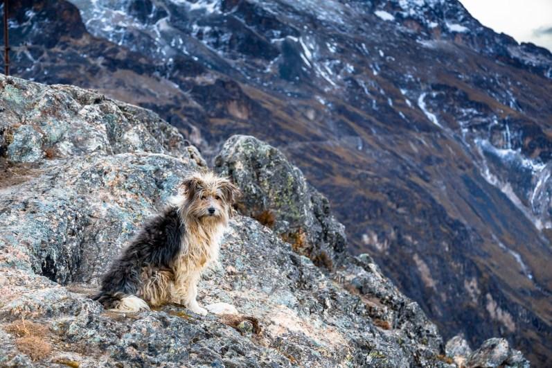 Huayna Potosi Mountain Bolivia -44- July 2015