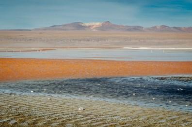Salar de Uyuni - Bolivia -115- July 2015