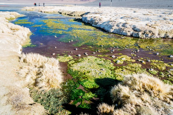 Salar de Uyuni - Bolivia -119- July 2015