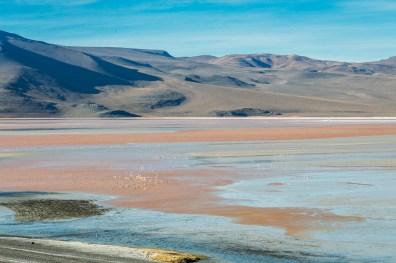 Salar de Uyuni - Bolivia -125- July 2015