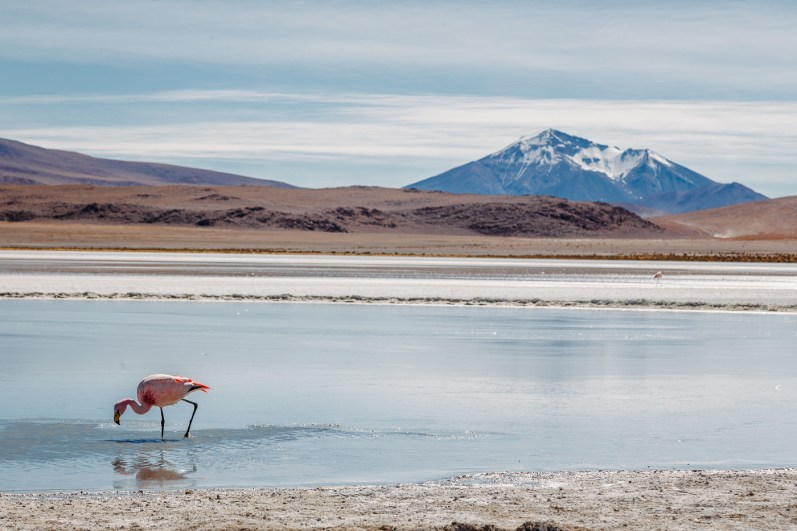 Salar de Uyuni - Bolivia -91- July 2015