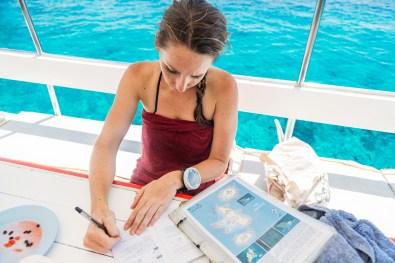 Recording our sightings at Koh Haa - Koh Lanta Diving