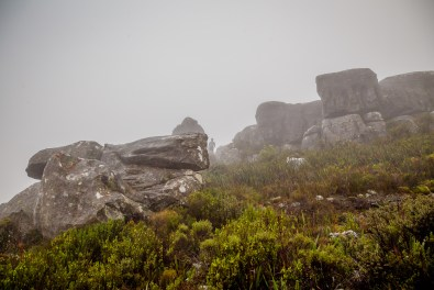 A cloudy Table Mountain summit