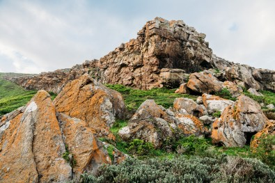 Robberg Nature Reserve Park South Africa -30