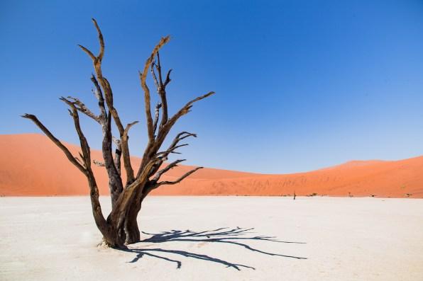 Deadvlei Namib-Naukluft Park -54-2