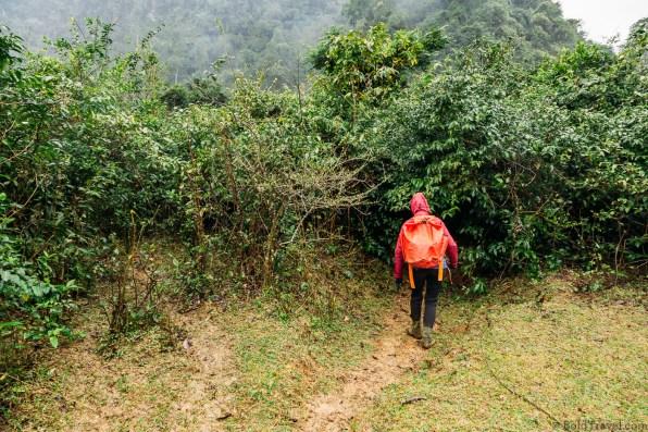 Phong Nha Caving and Trekking -17
